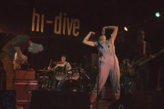 Oxeye Daisy at Hi-Dive