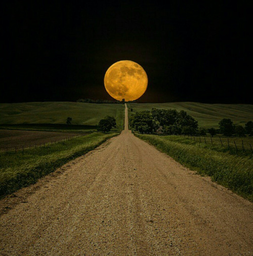 The Big Moon - The Road