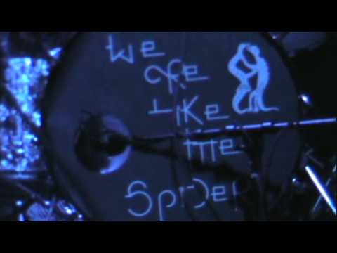 We Are Like the Spider - Follow the Flies