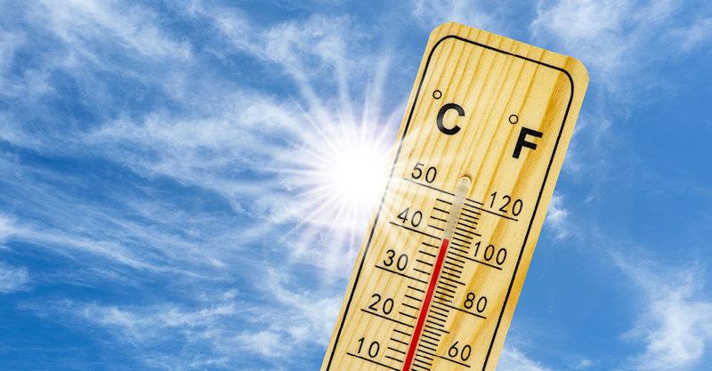 Hot summer_